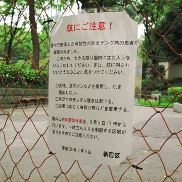 子どもをデング熱に感染させない!実践するべき蚊への6つの対策法