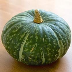 離乳食でかぼちゃはいつから使えるの?調理法&冷凍のやり方は?
