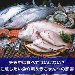 妊娠中は食べてはいけない?注意したい魚介類&赤ちゃんへの影響