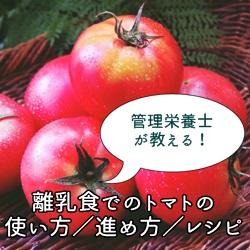 管理栄養士が教える!離乳食でのトマトの使い方/進め方/レシピ