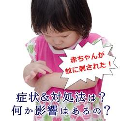 赤ちゃんが蚊に刺された時の症状&対処法は?何か影響はあるの?