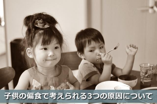 ご飯を食べる兄弟