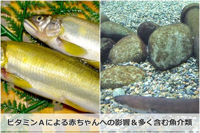 鮎とウナギ