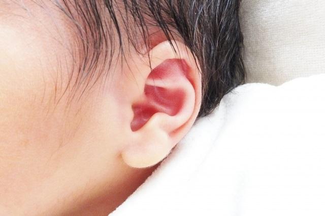 新生児の耳