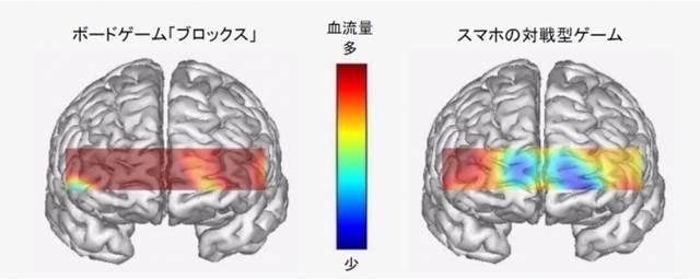 脳の活性化に関する実験
